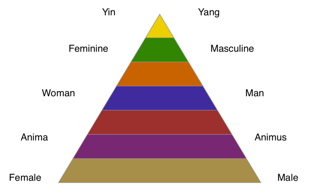 """Depending on which stage you currently reside in, you will use different terms for gender-differences. In the yellow stage, masculinity is just described best as """"the yang principle""""."""